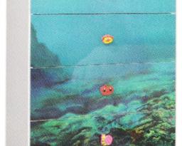 Комод Мульти, Дельфины, Світ меблів